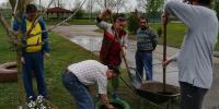 Do pneumatík sme dali zeminu
